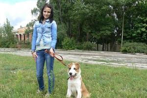 Рекомендации для правильного воспитания щенков алабаев