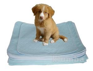 Впитывающая пеленка для собак