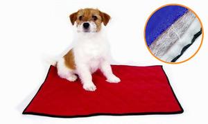 Многоразовые пеленки для собак: плюсы и минусы